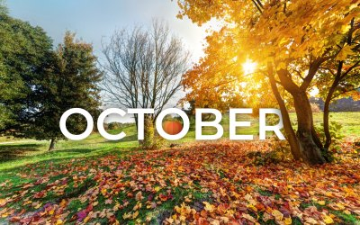 """October """"National Day"""" Campaign Ideas for Local Advertisers"""