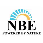 NBE Logo