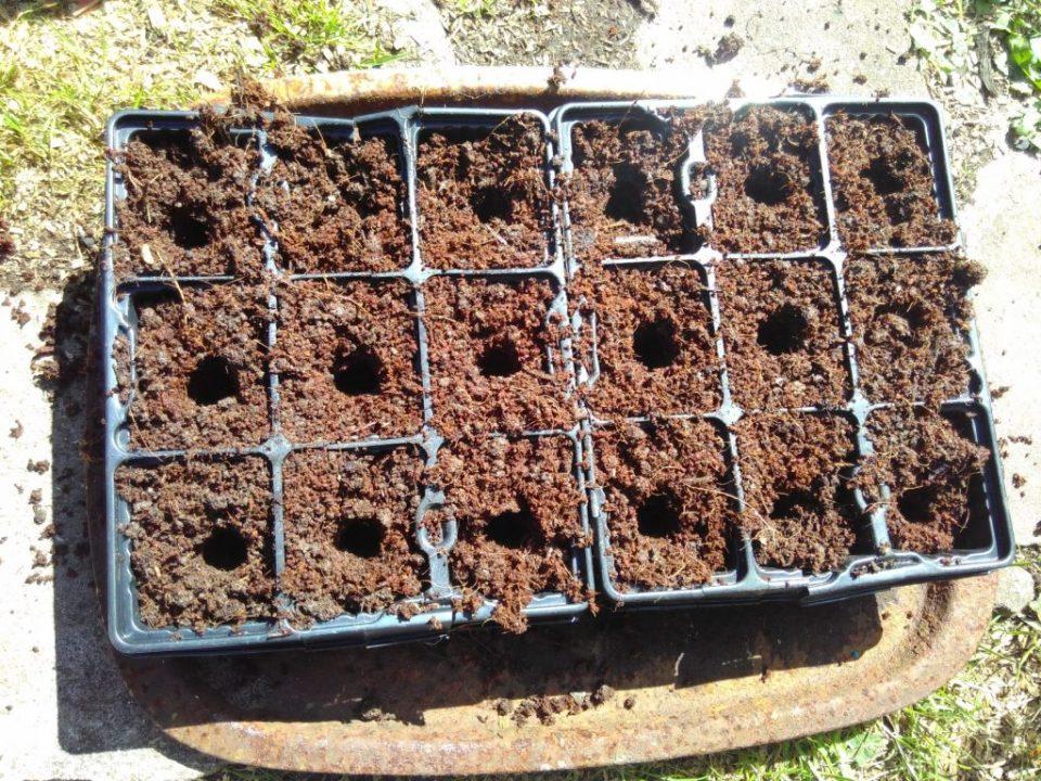modules full of soil