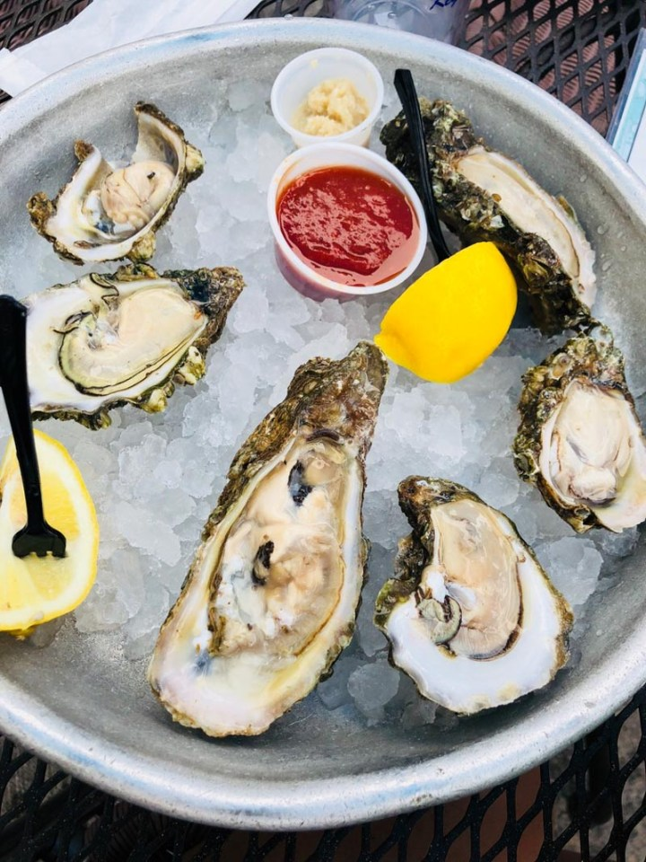 Raw oysters at Half Shell Raw Bar