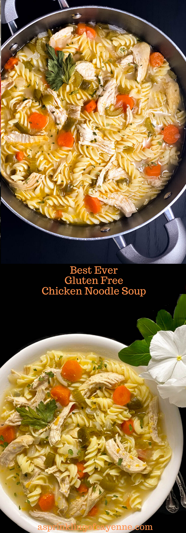 Best Ever Gluten Free Chicken Noodle Soup Long Pin