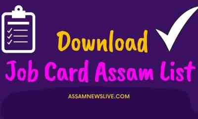 Job Card Assam List 2021