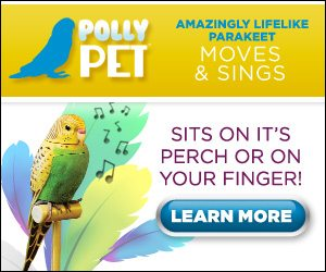 perfectpolly