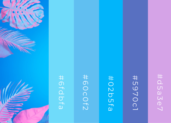 Bright Blue and Pink Color Palette