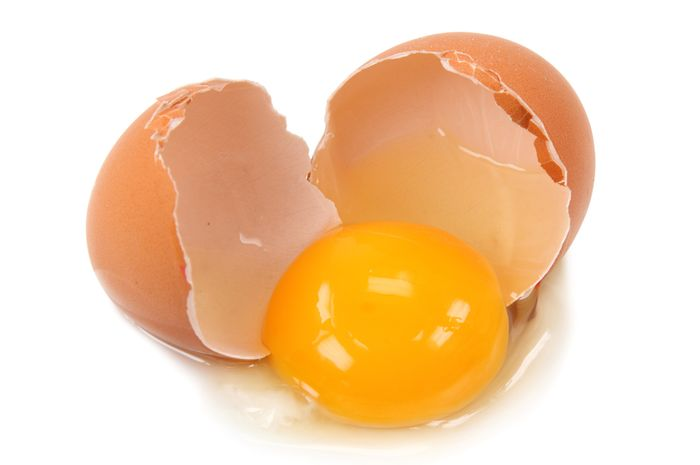 Hasil gambar untuk telur menetas