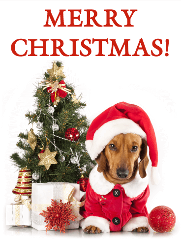 Christmas Cards Merry Christmas Greetings Birthday