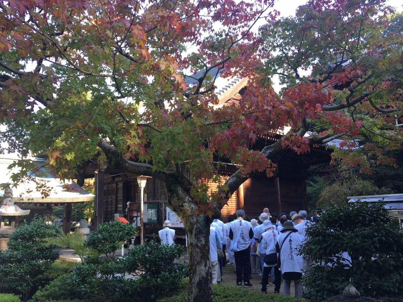 Shikoku6.jpg