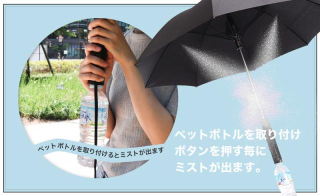 fan2.jpg