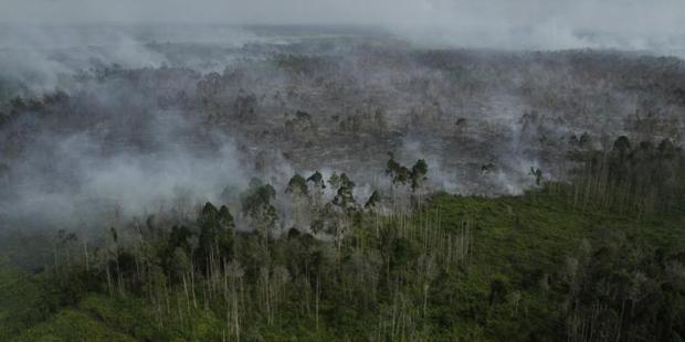Satelit Deteksi 90 Titik Panas Riau