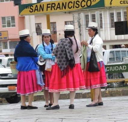 The faux Ecuadorian ikat shawl–a paw print!