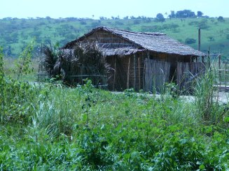 A typical house and dense vegetation in Molokai, D.R. Congo in Africa.