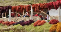 Red dye day in Acopia, Peru. The weavers use cochineal on wool and alpaca yarn.