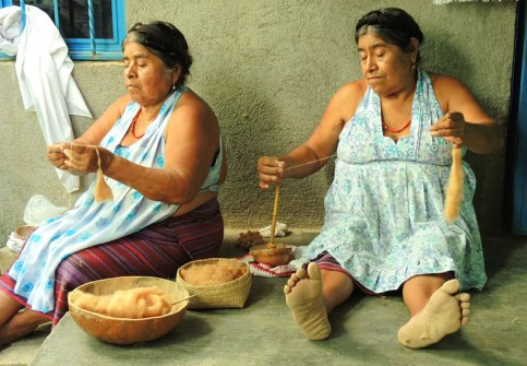 The two sisters, Paula and Feliza, handspinning brown cotton on the traditional hand spindle using a gourd bowl as a support.