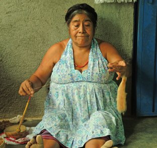 Feliza spinning brown cotton using the traditional Oaxacan hand spindle.