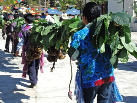 """A bough of native plants being carried into the church on the """"raising of the jaguar tree"""" day."""