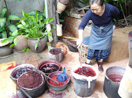The natural dye of lac being prepared in Laos.