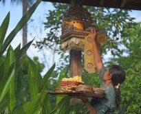 An early evening offering at Threads of Life in Ubud, Indonesia.