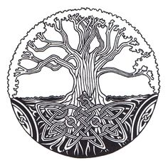 Tree of Life image.