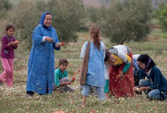Amina gathers wildflowers with children at the school where her husband teaches. She will use the flowers for dyeing fabric. photo credit: Joe Coca