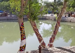 Ikat-wrapped-trees