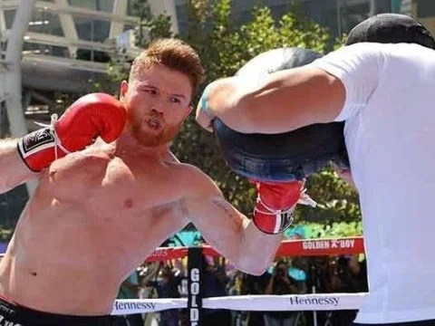 Saúl Álvarez quiere pelear antes de que termine este año.