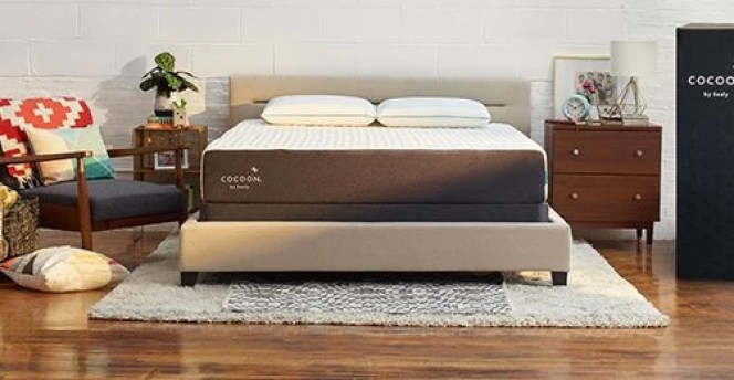 Cocoon by Sealy Coupon