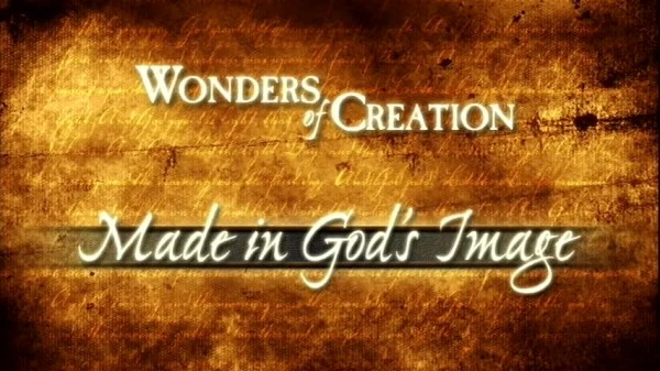 Made in God's Image | Kids Answers