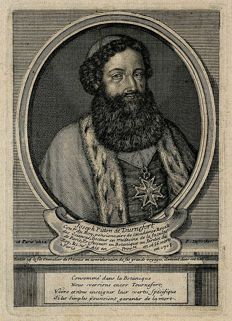 A live engraving of Joseph Pitton de Tournefort.
