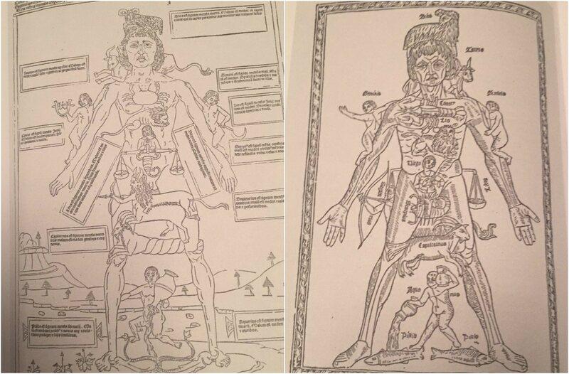 Gauche, Zodiac Man c.  1491;  À droite Zodiac Man c.  1494 (de <em> De Fasciculus medicinae opnieuw bekeken </ em> par Chris Coppens)