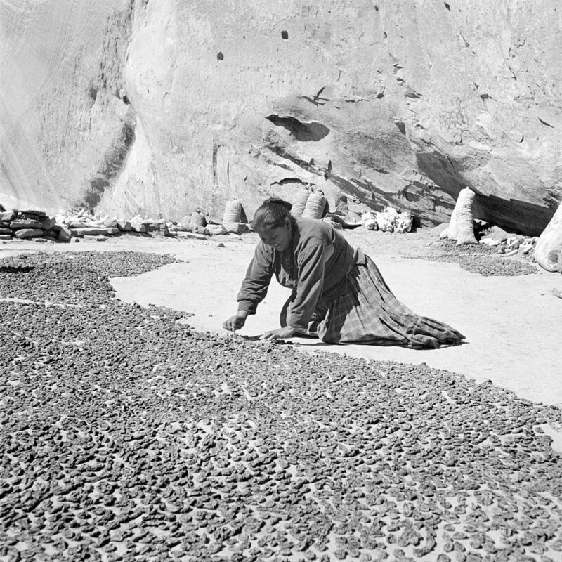 A Navajo woman in the 1930s supervises a vast flat of drying peaches in Canyon del Muerto, Arizona.