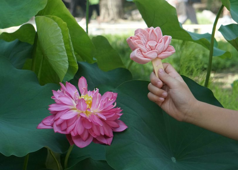 The Yuanmingyuan Garden in Beijing celebrated its lotus blossoms with strawberry and lotus-flavored treats.