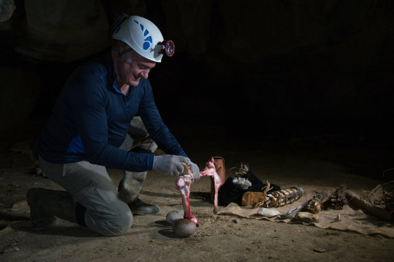 Researchers recreated stone lamps greased with marrow to understand how prehistoric artists might have illuminated their workspace.