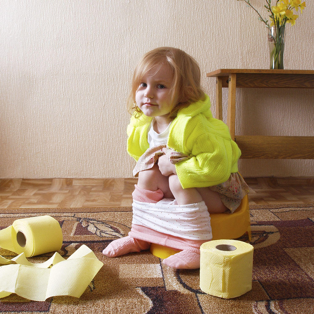 Potty Training In Three Days Or Less