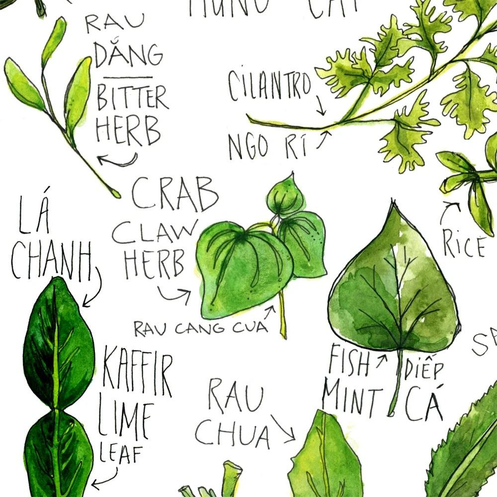 Vietnamese Herbs Watercolor Print Drywell Art