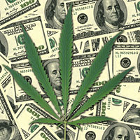sheet-of-money-hemp