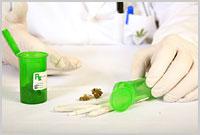 doctor_marijuana