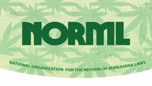 NORML-CURVED-Rolling-Papers-min-678x381