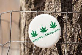 Legalize Marijuana