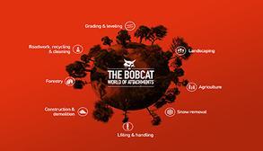 Bobcat rental