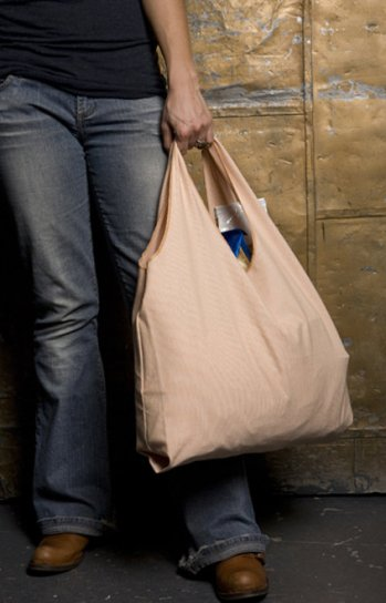 Grocerybag_3_large