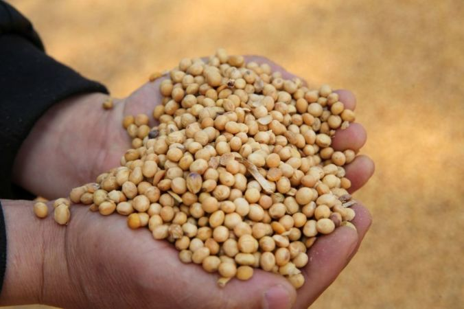 Soybeans in China, but not from America.
