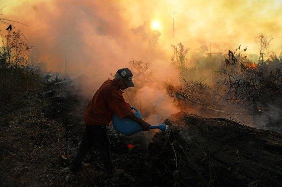 relaciona-se com o Exploit the Amazon: Brazil revela seu novo e radical argumento de venda