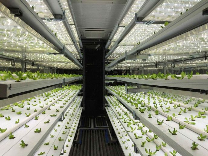 These Shipping Containers Have Farms Inside - Bloomberg