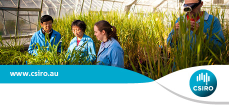 CSIRO Postdoctoral Fellowship In Root-Soil Water Interactions