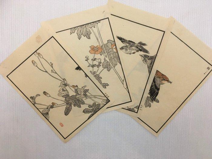 "Lot of 4 original wood engravings (2 diptychs) (1) - Kono Bairei (1844-1895) - ""Bairei hyakucho gafu"" 楳嶺百鳥画譜 天 (Bairei's Album of One Hundred Flowers and Birds) - 1881 (Meiji 14) - Japan - Catawiki"