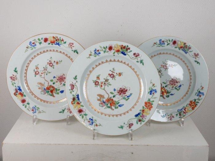 Three large famille rose plates - Porcelain - China - Qianlong (1736-1795)