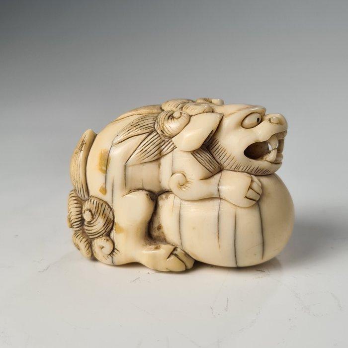 Netsuke - Elephant ivory - Shishi with tama - Japan - Edo Period (1600-1868)