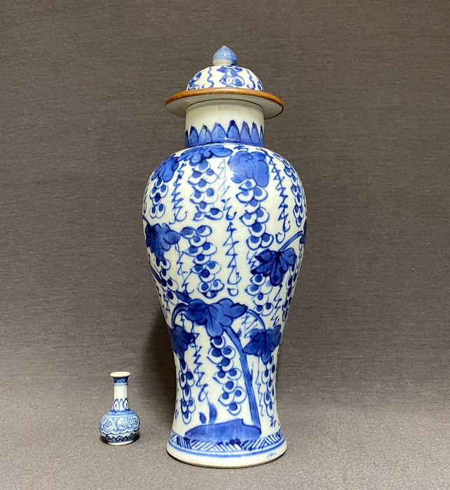 Vase - Porcelain - Chinese - Grapevines - Palm leafs - China - Kangxi (1662-1722)