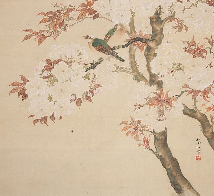 Hanging scroll (1) - Silk, Wood - Very fine pair of birds amidst sakura blossom, signed - Japan - 19th century