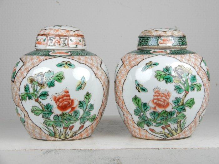 Pair of ginger jars - Porcelain - China - Guangxu (1875-1908)